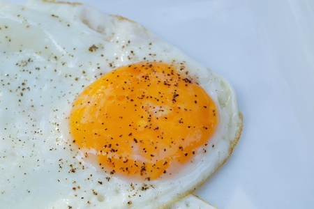 close-up of isolated fried egg photo