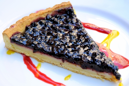 isolated delicious blueberry pie in white plate