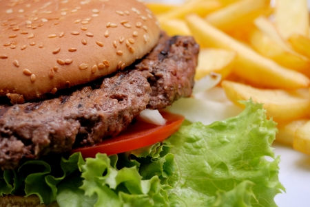 isolated delicious american burger in table with fresh lettuce and french fries Stock Photo - 17068351