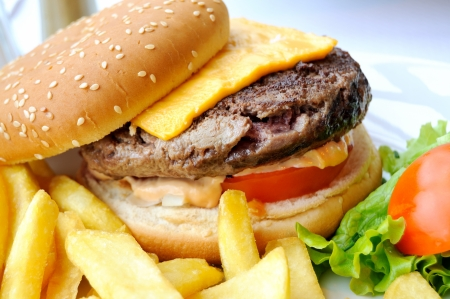 isolated delicious american cheese burger with french fries and fresh lettuce in white plate Stock Photo - 17390732