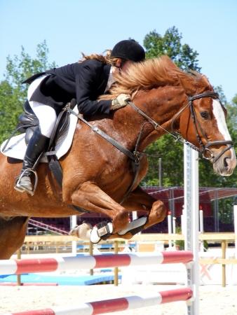 Ragazza di salto ostacoli a cavallo di castagno