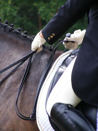 Dressage rider close up photo