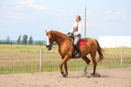 Beautiful young blonde woman riding trotting chestnut horse Stock Photo - 16380731