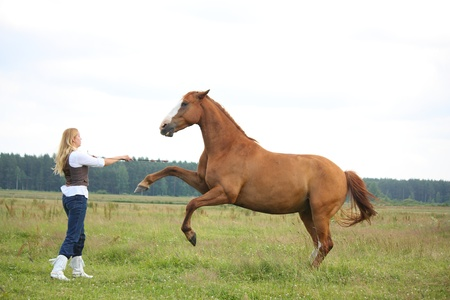 Young blonde woman commanding horse to rear (stand up) photo