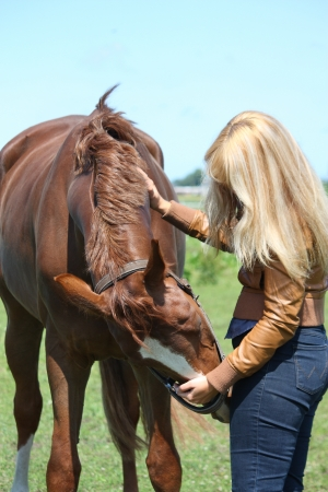 pat: Blonde woman and chestnut horse portrait in summer