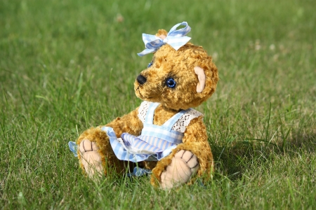 Beautiful girl teddy bear in blue dress in the garden photo