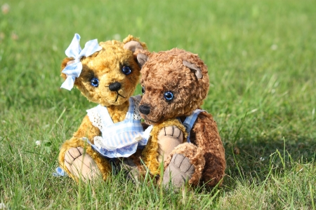 Two cute teddy bears romance in the garden in the summer photo