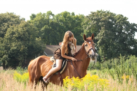 Beautiful teenager girl riding brown horse at the field of flowers Stock Photo - 19505220