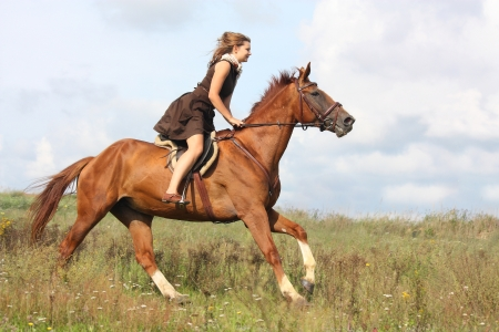 Beautiful teenage girl riding horse at the field in summer photo