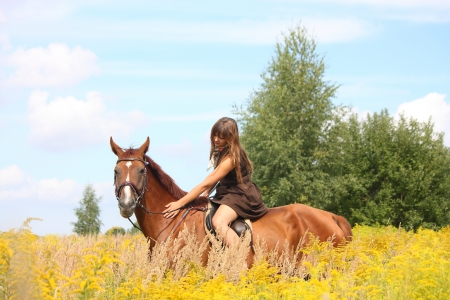 Beautiful teenager girl riding brown horse at the field of flowers Stock Photo - 19983815