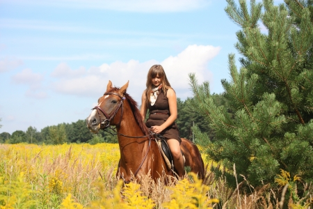 Beautiful teenager girl riding brown horse at the field of flowers Stock Photo - 19983770