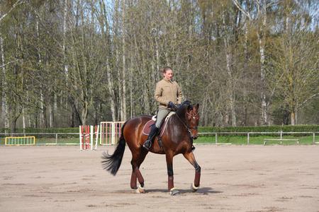 drafje: Jonge blonde vrouw rijden Letse ras baai paard, arbeidsdraf