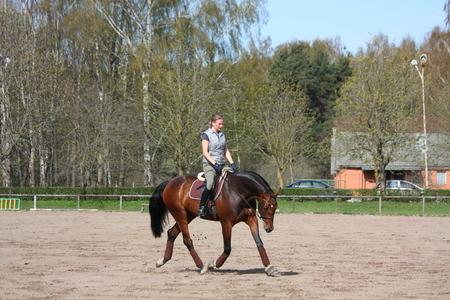 drafje: Jonge blonde vrouw rijdt Letse ras baai paard, arbeidsdraf
