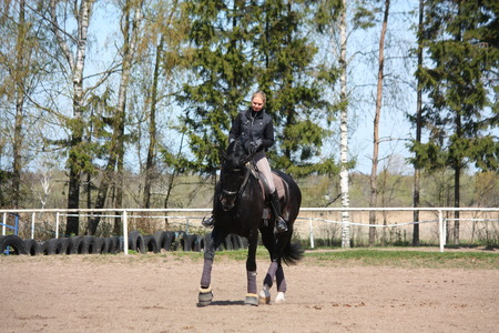 gelding: Blonde woman riding black sport horse