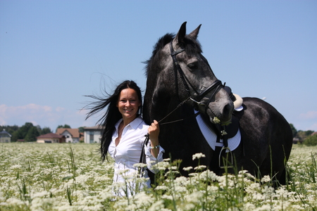 gelding: Beautiful young woman and gray horse portrait at the blooming field in summer Stock Photo