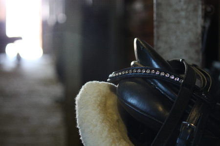 girth: Horse black english saddle close up in the stable