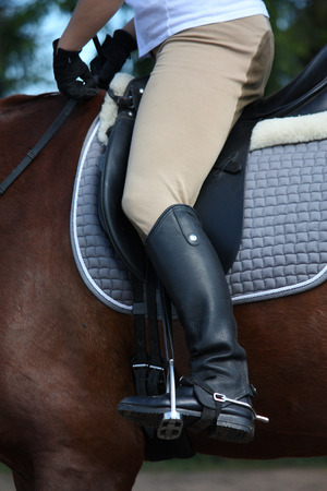 spurs: Close up of rider legs with spurs on chestnut horse