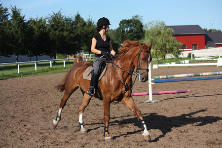Brunette woman cantering on chestnut horse in summer Stock Photo