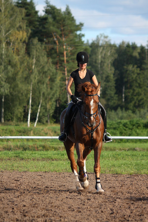 trotting: Beautiful brunette woman riding (trotting) chestnut horse in summer