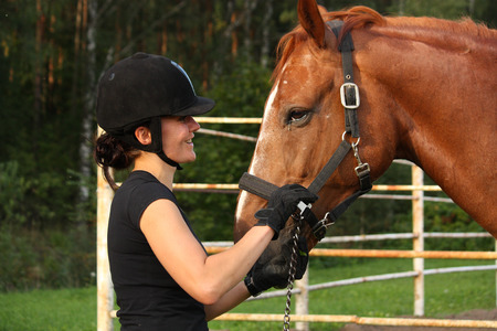 halter: Woman in riding helmet and brown horse portrait in summer