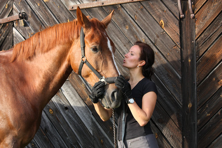 Portrait of happy woman and brown horse near the barn photo