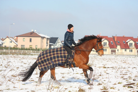 Teenager girl riding galloping bay horse in winter at the field near the village