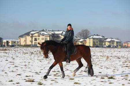 Teenager girl riding bay horse in winter at the field near the village photo