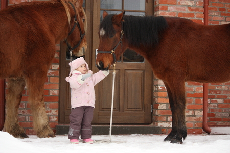 horse in snow: Little girl and two horses standing near the cottage door in winter Stock Photo