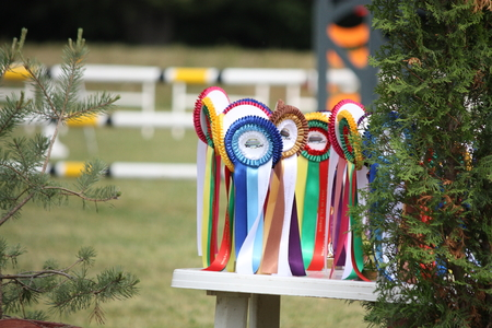 Close up of prize ribbons for the show Stock Photo
