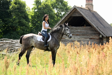 animal private: Portrait of beautiful young woman on horse near the barn Stock Photo