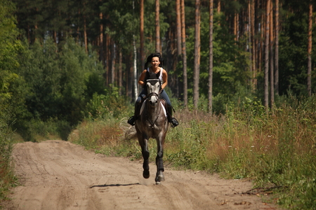 Beautiful woman riding gray horse near the forest photo