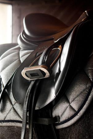 gray horse: Close up of black leather saddle on gray horse back Stock Photo