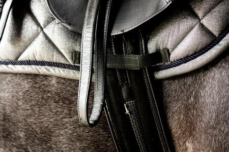Close up of black leather saddle on gray horse back Stock Photo