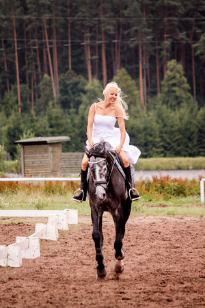 gray horse: Beautiful bride riding gray horse in summer field