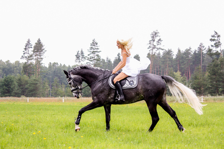Beautiful blonde woman and gray horse riding at the meadow