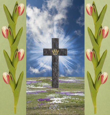 resurrected: Resurrection Cross with triumph crown, on a field of blooming crocus, surrounded of green borders with tulips  Stock Photo