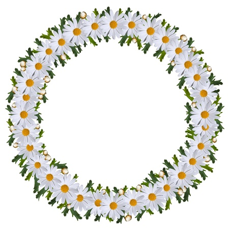 floral wreath: Midsummer wreath of daisies