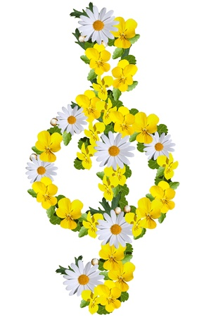 G clef made of daisies and yellow violets isolated on white photo
