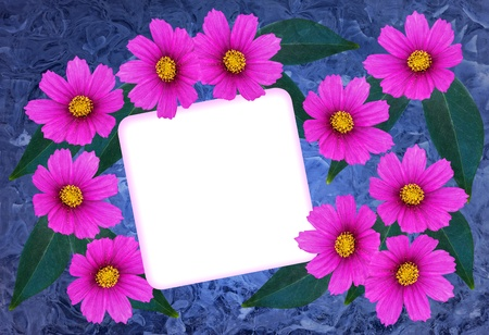 Textured greetingcard with pink cosmea flower and a blank card Banco de Imagens