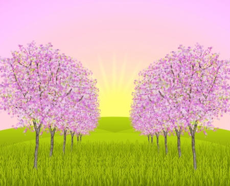 folkart: Park way with blossoming apple trees on a field and at dawn sunrise