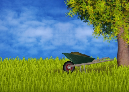 folkloristic: Green wheelbarrow in the garden, maple tree, sky with cloud, green grass