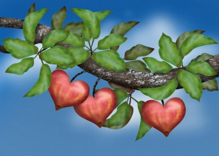 Conceptual love that is growing shown by growing heart-shaped apples photo