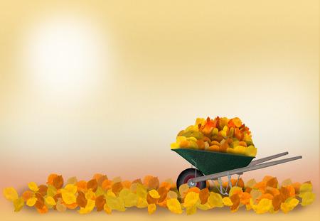 Wheelbarrow in the garden with autumnleaves