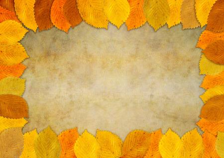 Autumn leaf frame on textured  Banco de Imagens