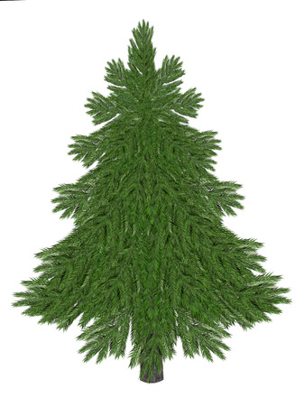 Christmastree natural