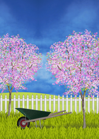 folkart: A green wheelbarrow at the lane white garden fence and blossoming apple trees Stock Photo