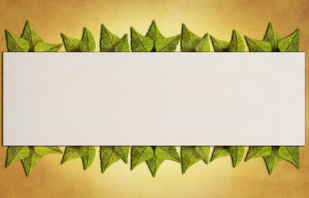 Summer frame with green leaves. Summertime background with copy space for your tex