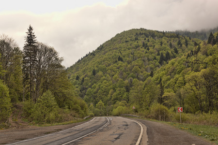 on the lonely road: Lonely road in May Carpathians, Ukraine