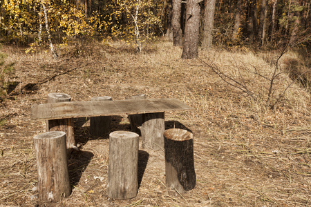 An improvised table with seats in the form of stumps in the autumn forest Stock Photo