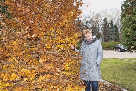 Mature woman near the autumn tree. Woman in a long gray raincoat